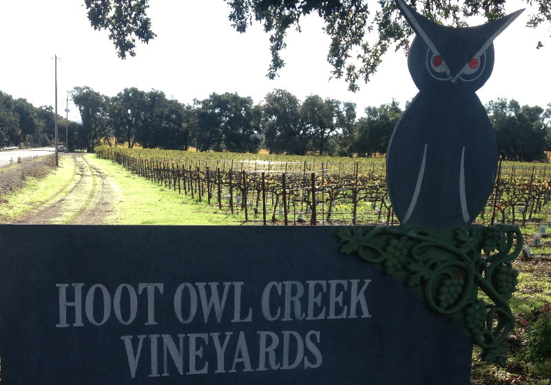Hoot Owl Creek Wine