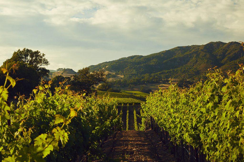 Stonestreet Winery Healdsburg