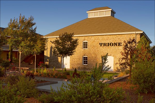 Trione Winery Tasting Room California